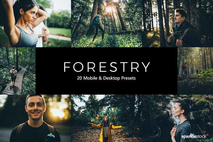 Thumbnail for 20 Forestry Lightroom Presets & LUTs