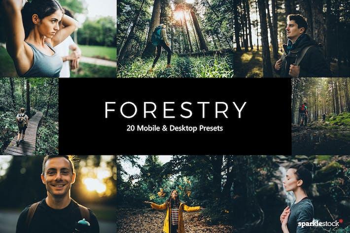 Thumbnail for 20 пресетов и LUT для лесного освещения