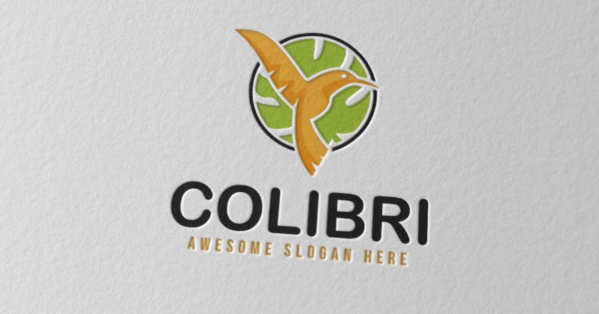 Colibri by Scredeck