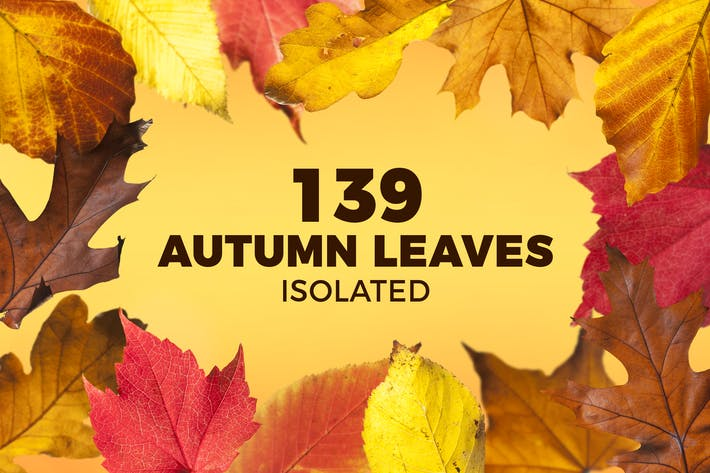 Thumbnail for 139 Isolated Autumn Leaves