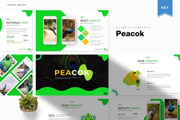 Thumbnail for Peacok | Keynote Template