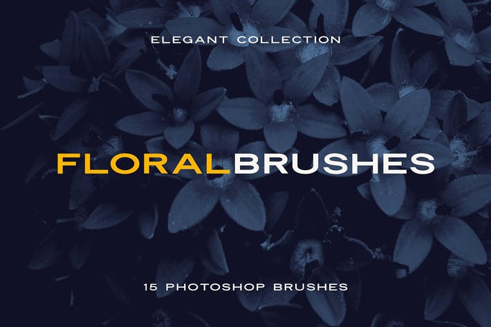 Cover Image For Elegant Floral Brushes for Photoshop