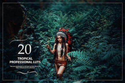 Набор из 20 тропических LUT