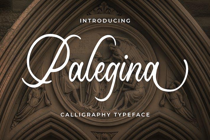 Thumbnail for Palegina - Calligraphy Typeface