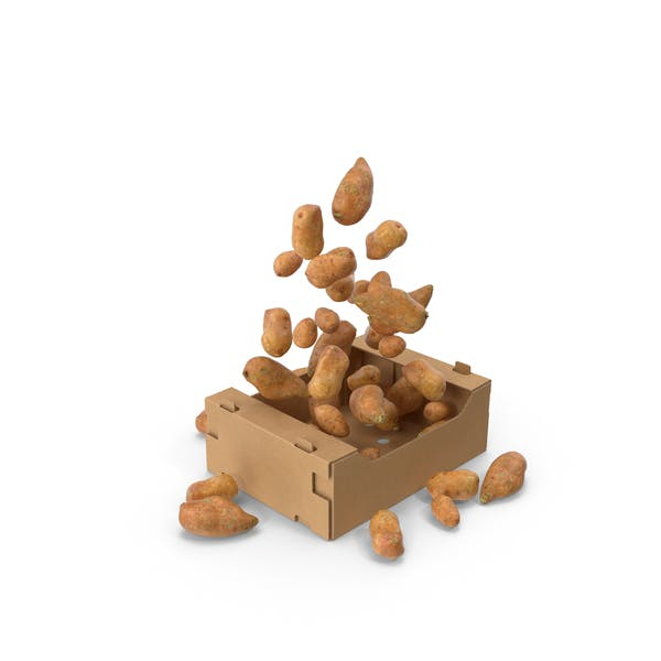 Thumbnail for Box With Sweet Potatoes