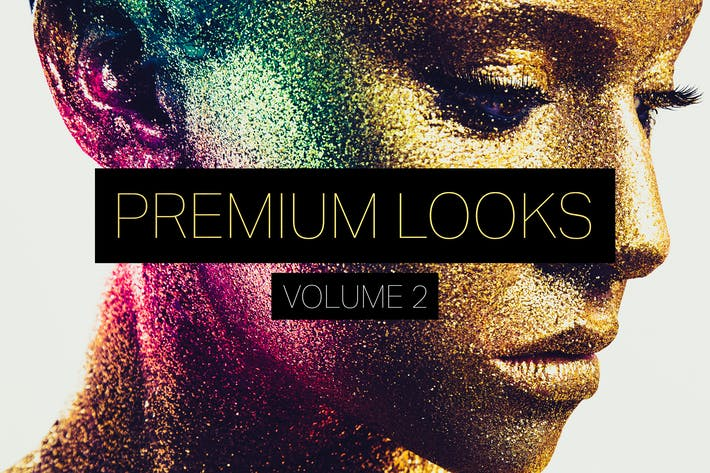 Premium Looks Lightroom Presets (Vol. 2)