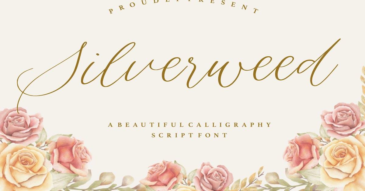 Download Silverweed YH - Elegant Script Font by GranzCreative