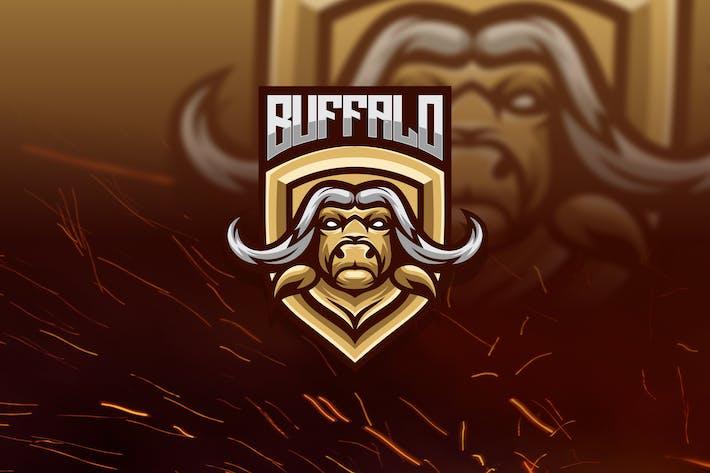 Thumbnail for buffalo