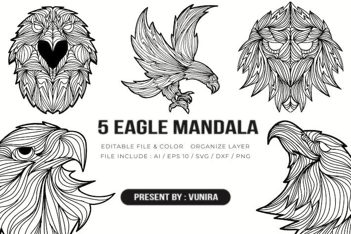 Thumbnail for 5 Adler Mandala | Design-Illustration