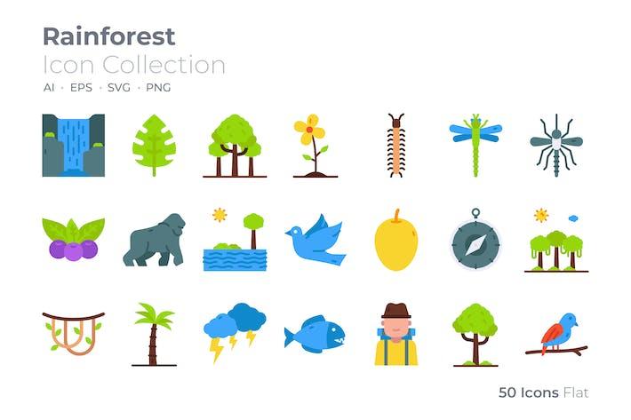 Rainforest Color Icon