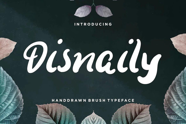 Disnaily-Handdrawn-Brush