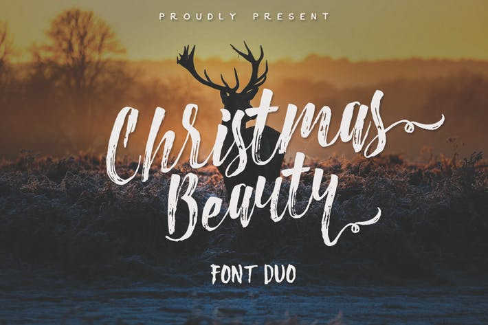 Thumbnail for Christmas Beauty