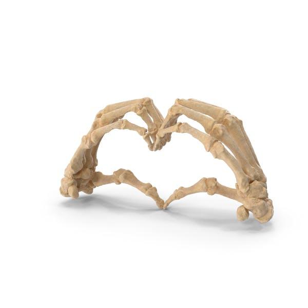 Скелетный знак сердца руки