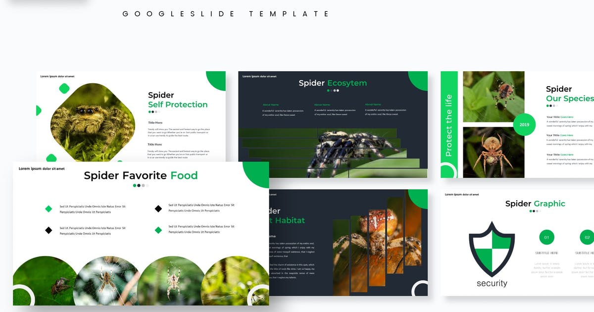 Download Spiders  - Google Slides Template by aqrstudio