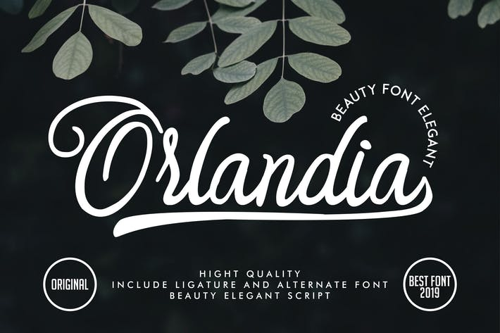 Cover Image For Orlandia | Beauty Font Elegant