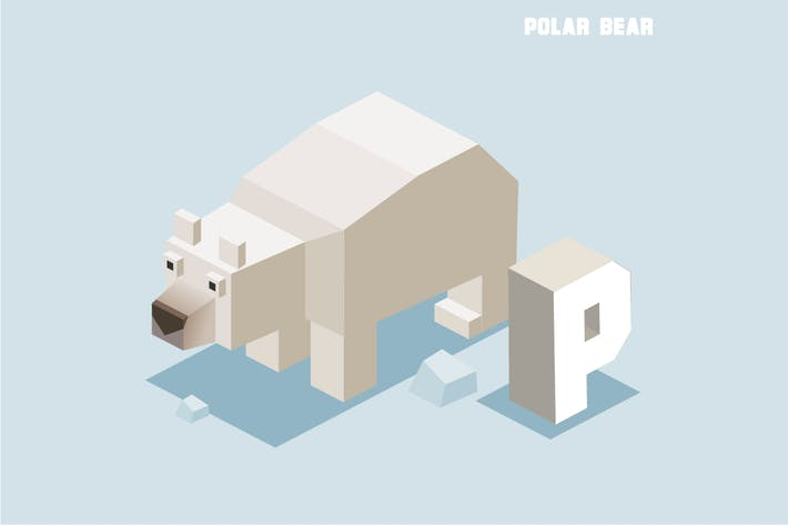 Cover Image For P for Polar bear. Animal Alphabet
