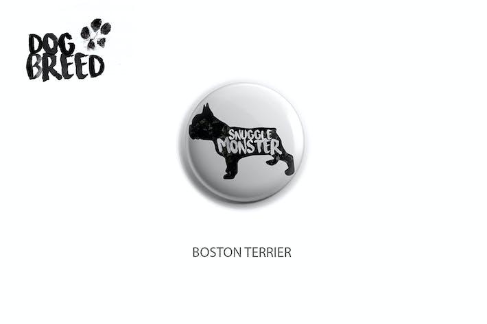 Thumbnail for Boston Terrier