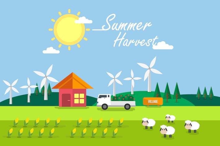 Sommerernte - Illustration Hintergrund