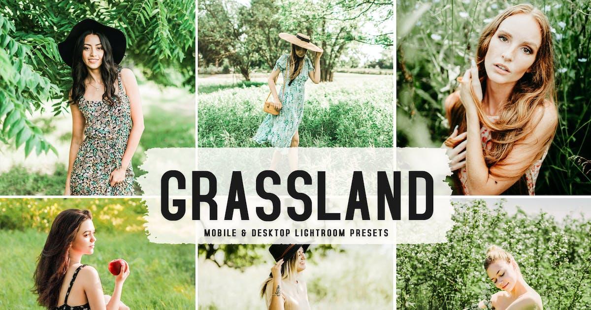 Download Grassland Mobile & Desktop Lightroom Presets by creativetacos