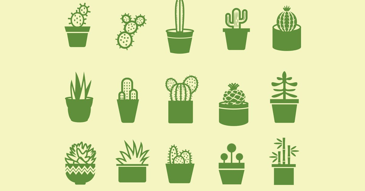 15 Cactus and Plant Icons by creativevip