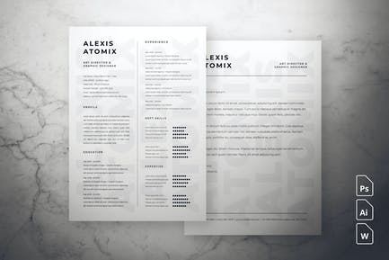 Professional Resume & Cover Letter #2