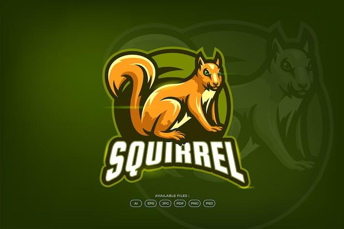 Thumbnail for Cute Squirrel Fauna Creature Mascot Logo Template