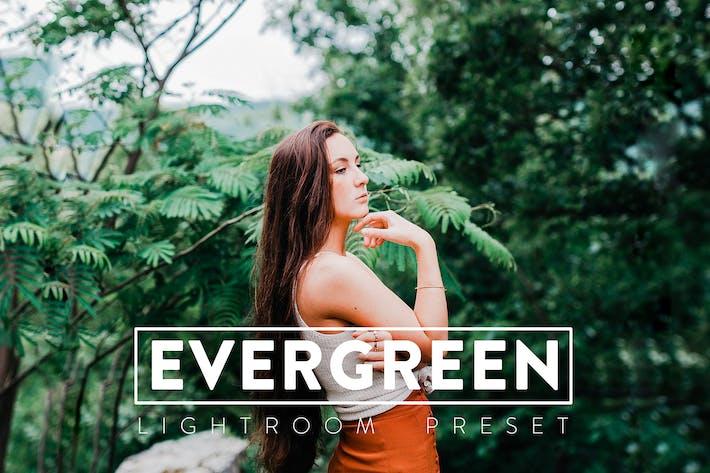 10 Evergreen Lightroom Presets