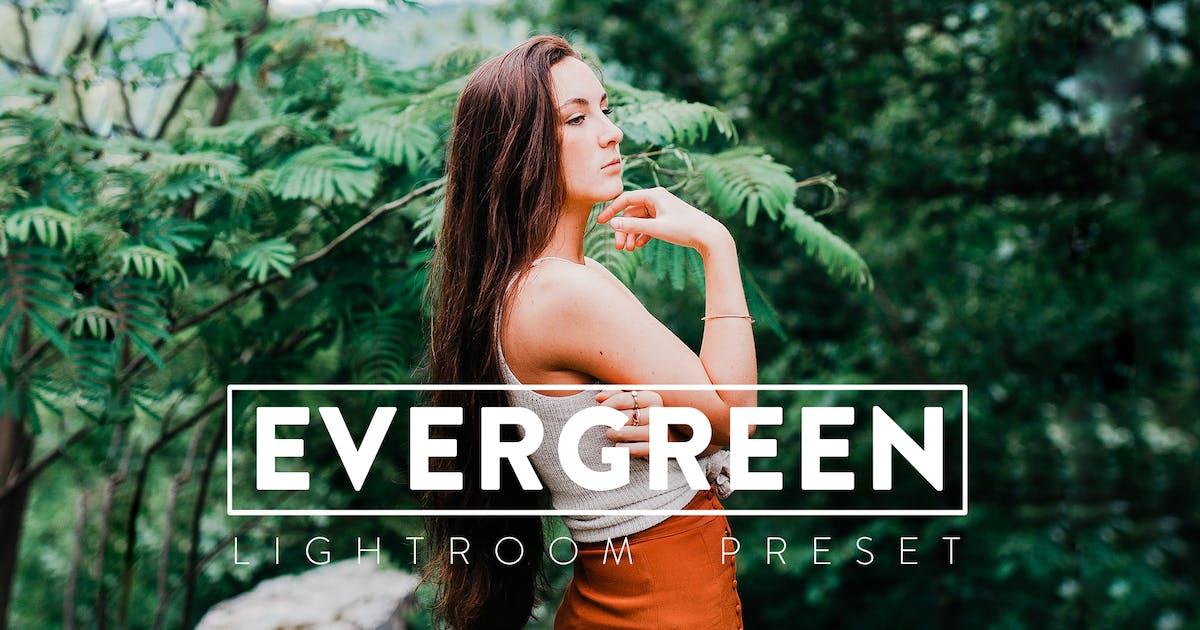 Download 10 Evergreen Lightroom Presets by CCpreset