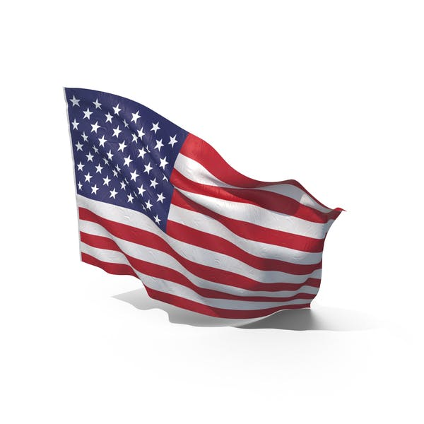 Cover Image for Waving American Flag