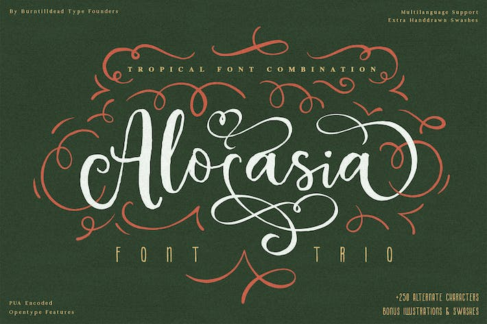 Thumbnail for Alocasia-Trio Font Combination