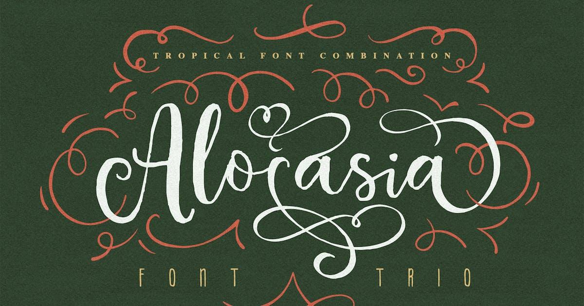 Download Alocasia-Trio Font Combination by Eric_Burntilldead