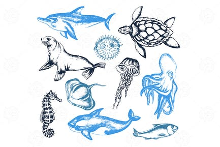 Sea Creatures - modern vector objects