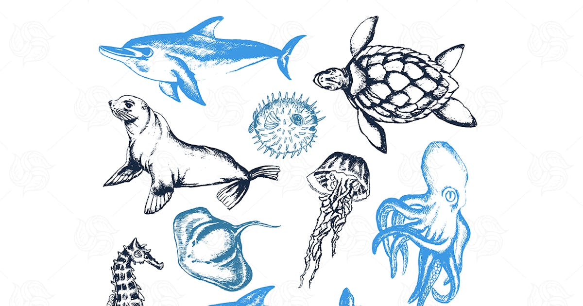 Download Sea Creatures - modern vector objects by BoykoPictures