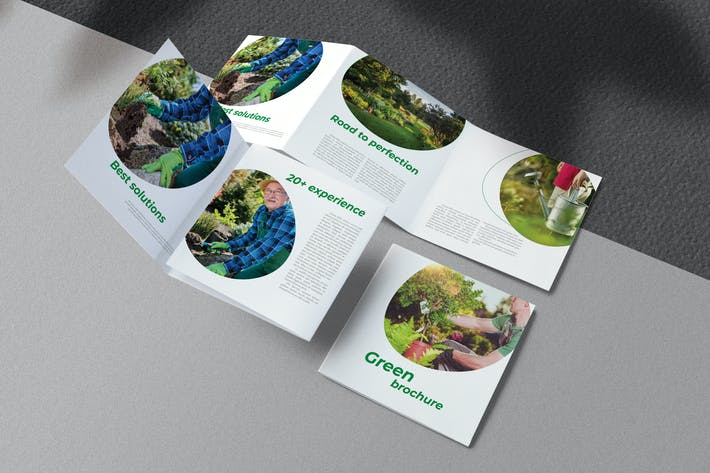 Thumbnail for Brochure écologique verte