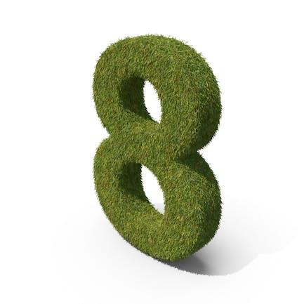 Grass Número 8