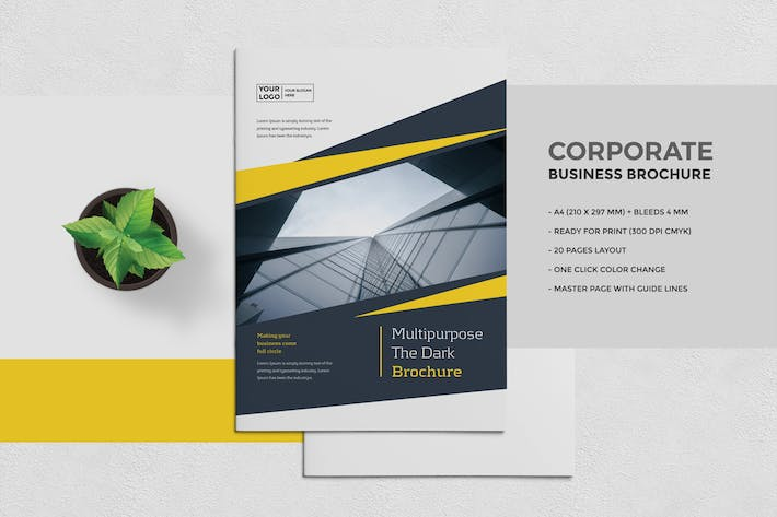 Thumbnail for Clean Business Brochure