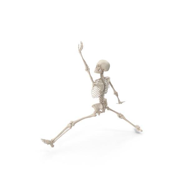 Скелет Шлем Данк
