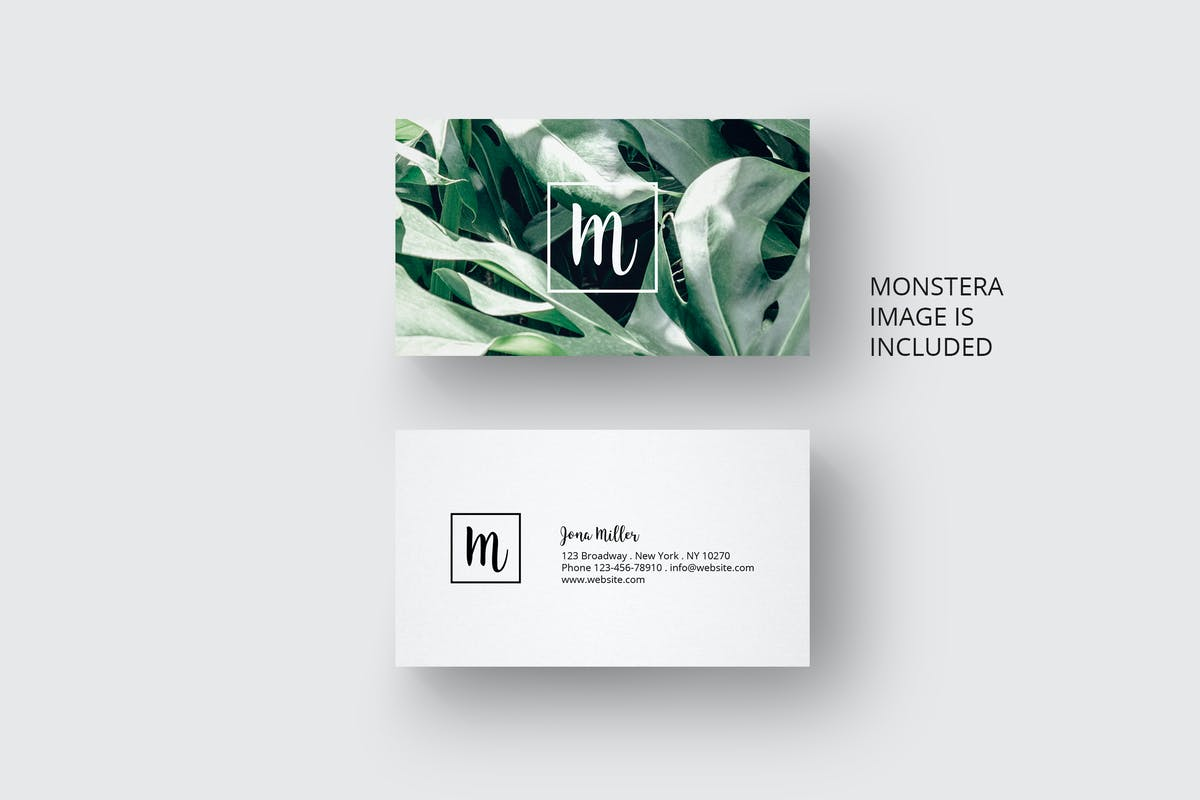 Download Business card with monstera leaf design by AgataCreate by Unknow