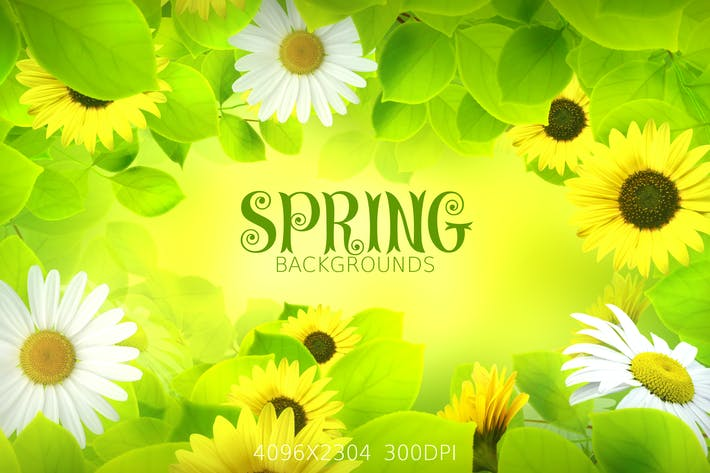 Thumbnail for Spring Flowers Backgrounds