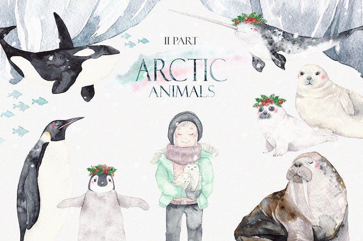 Thumbnail for ARCTIC TIERE Aquarell Set Teil 2