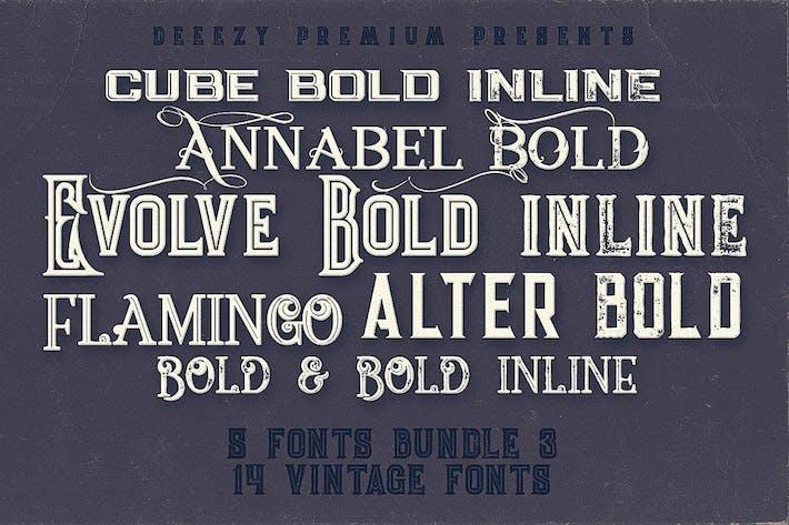 Thumbnail for 5 Fonts Bundle 3