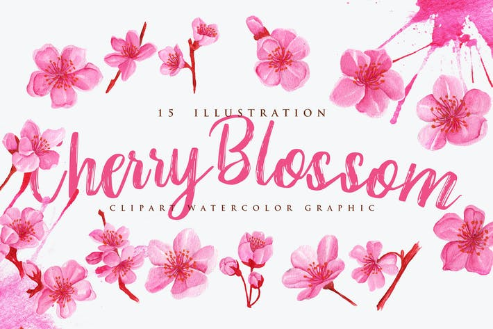 Thumbnail for 15 Watercolor Cherry Blossom Flower Illustration