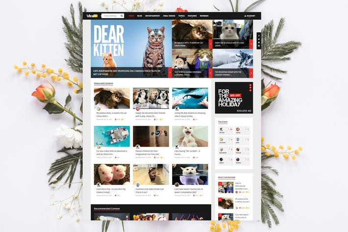 Thumbnail for ViralVideo - Noticias de membresía de usuarios/Tema de la revista