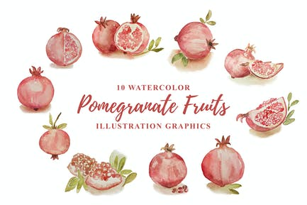 10 Aquarell Granatapfel Früchte Illustration