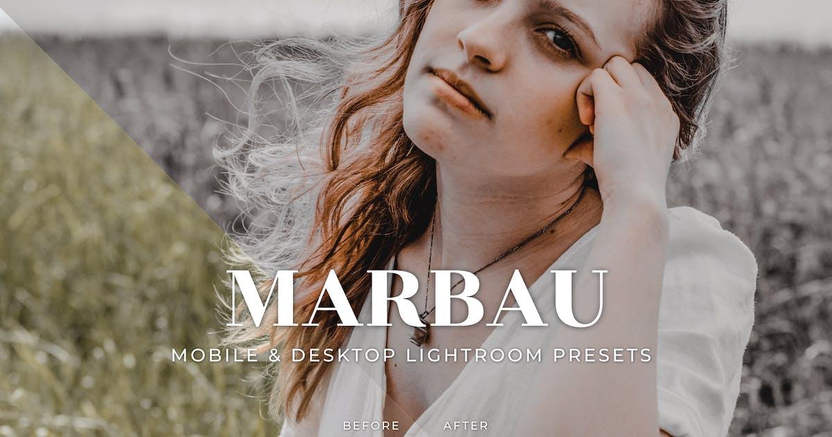 Download Marbau Mobile and Desktop Lightroom Presets by Laksmitagraphics