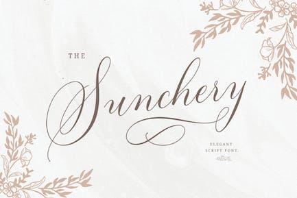Sunchery Script con extras gratis