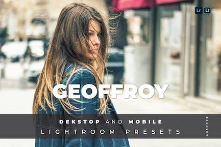 Geoffroy Desktop and Mobile Lightroom Preset