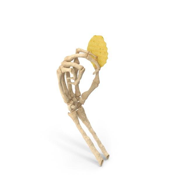 Скелет Рука держит Crinkle Cut Волнистый Картофельный Чип
