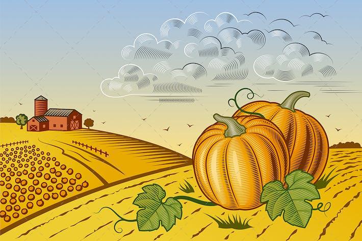 Thumbnail for Pumpkin Harvest Landscape