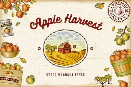 Vintage colorido juego de cosecha de manzana